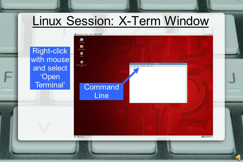 Linux Session: X-Term Window Command Line Right-click with mouse and select 'Open Terminal'