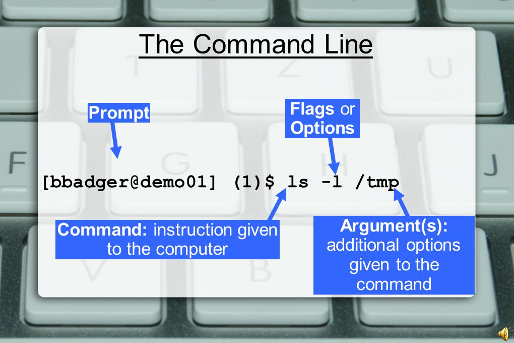 The Command Line [bbadger@demo01] (1)$ ls -l /tmp Argument(s): additional options given to the command Prompt Command: instruction given to the computer Flags or Options