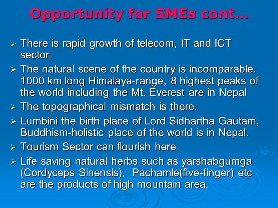 Opportunity for SMEs cont…  There is rapid growth of telecom, IT and ICT sector.