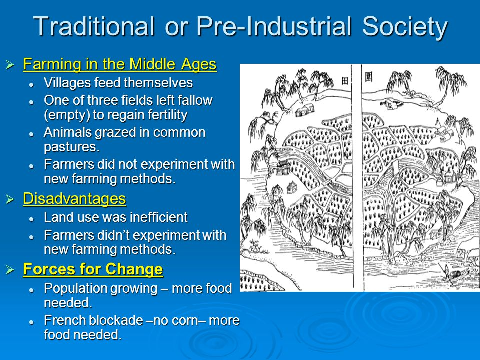 The Agricultural Revolution  Enclosure Movement -pg.