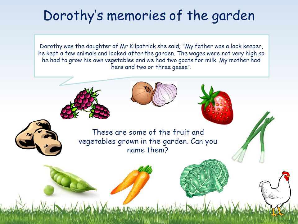 Dorothy was the daughter of Mr Kilpatrick she said; My father was a lock keeper, he kept a few animals and looked after the garden.