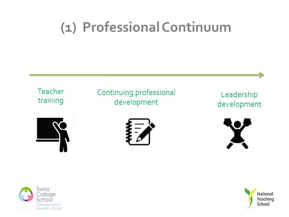 (1) Professional Continuum Teacher training Continuing professional development Leadership development