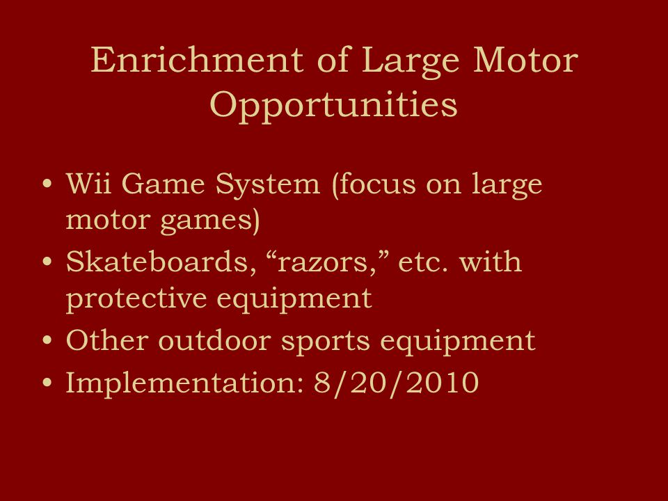 Enrichment of Large Motor Opportunities Wii Game System (focus on large motor games) Skateboards, razors, etc.