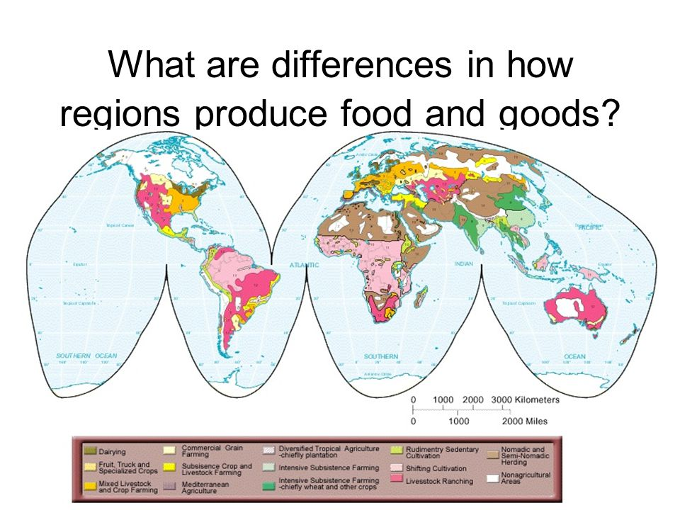 What are differences in how regions produce food and goods?