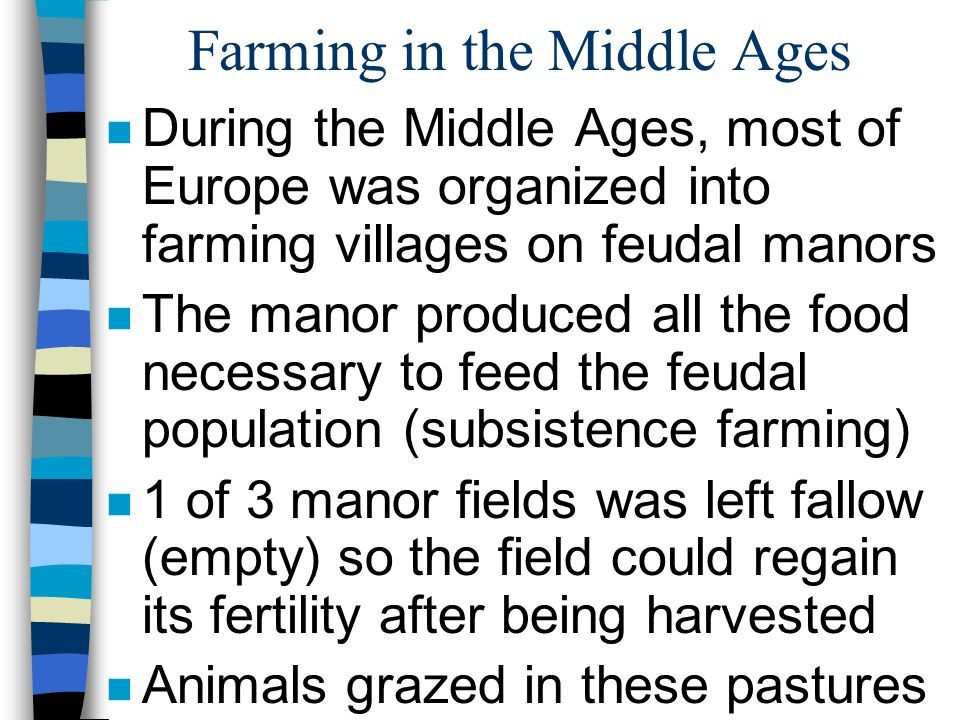 Farming in the Middle Ages n During the Middle Ages, most of Europe was organized into farming villages on feudal manors n The manor produced all the food necessary to feed the feudal population (subsistence farming) n 1 of 3 manor fields was left fallow (empty) so the field could regain its fertility after being harvested n Animals grazed in these pastures