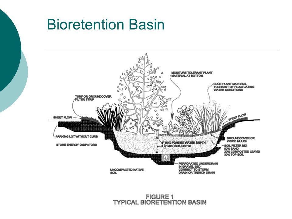 Bioretention Basin