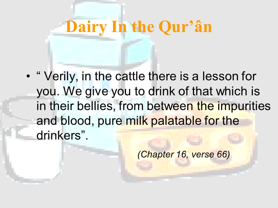 Main Source Cows Milk