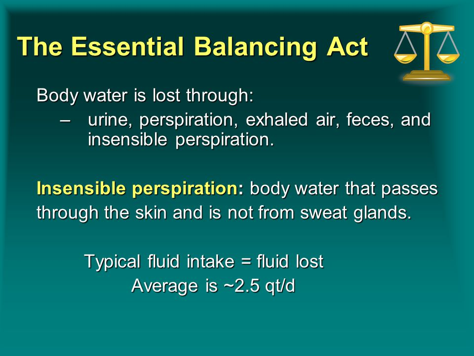 The Essential Balancing Act Body water is lost through: –urine, perspiration, exhaled air, feces, and insensible perspiration. Insensible perspiration