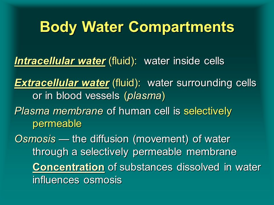 Body Water Compartments Intracellular water (fluid): water inside cells Extracellular water (fluid): water surrounding cells or in blood vessels (plas
