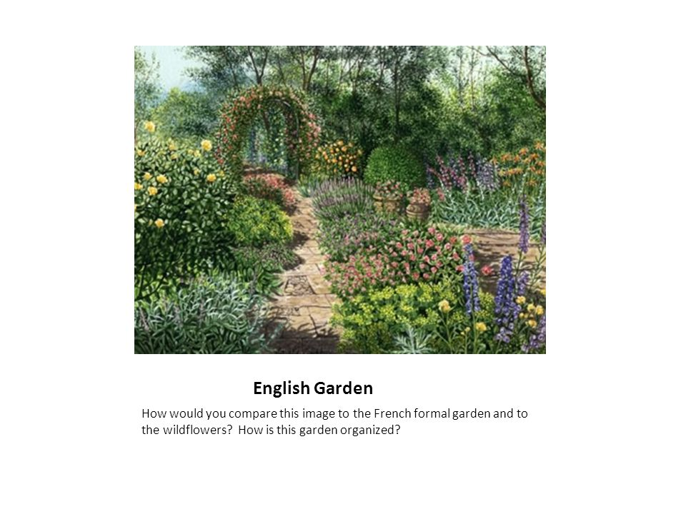 English Cottage Garden The English cottage garden works on a smaller scale than the English garden; it is domestic rather than public.
