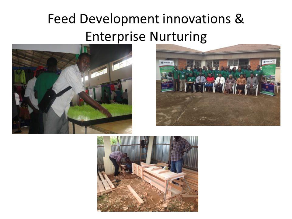 Feed Development innovations & Enterprise Nurturing