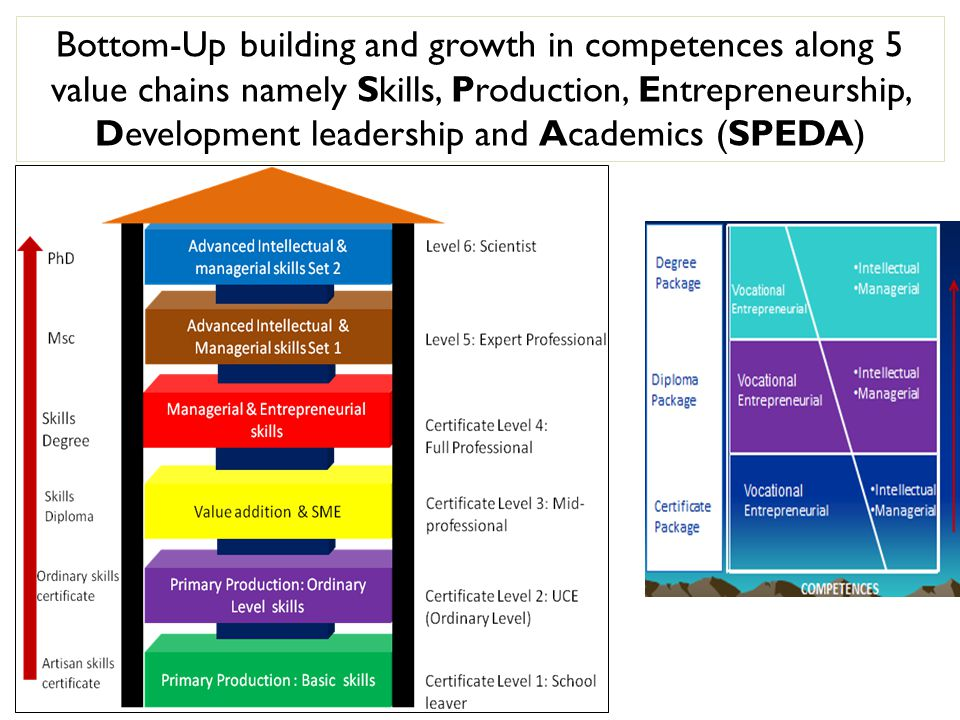Bottom-Up building and growth in competences along 5 value chains namely Skills, Production, Entrepreneurship, Development leadership and Academics (SPEDA)