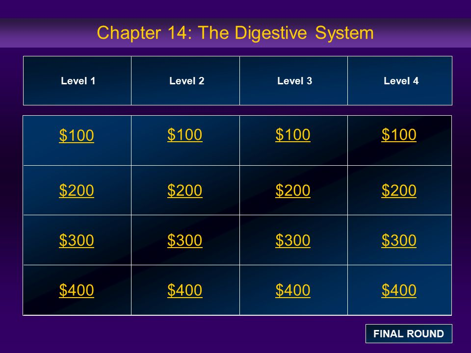 Chapter 14: The Digestive System $100 $200 $300 $400 $100$100$100 $200 $300 $400 Level 1Level 2Level 3Level 4 FINAL ROUND