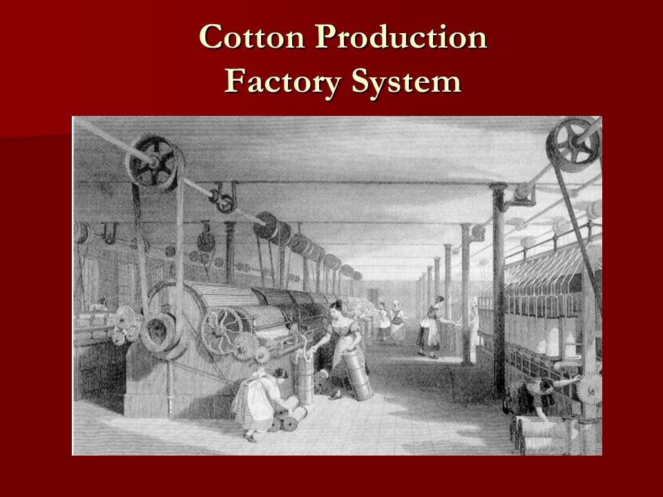 Cotton Production Factory System