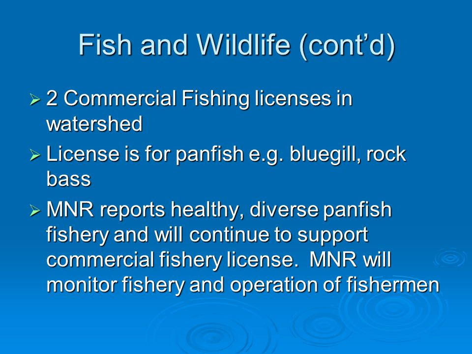 Fish and Wildlife (cont'd)  2 Commercial Fishing licenses in watershed  License is for panfish e.g. bluegill, rock bass  MNR reports healthy, diver