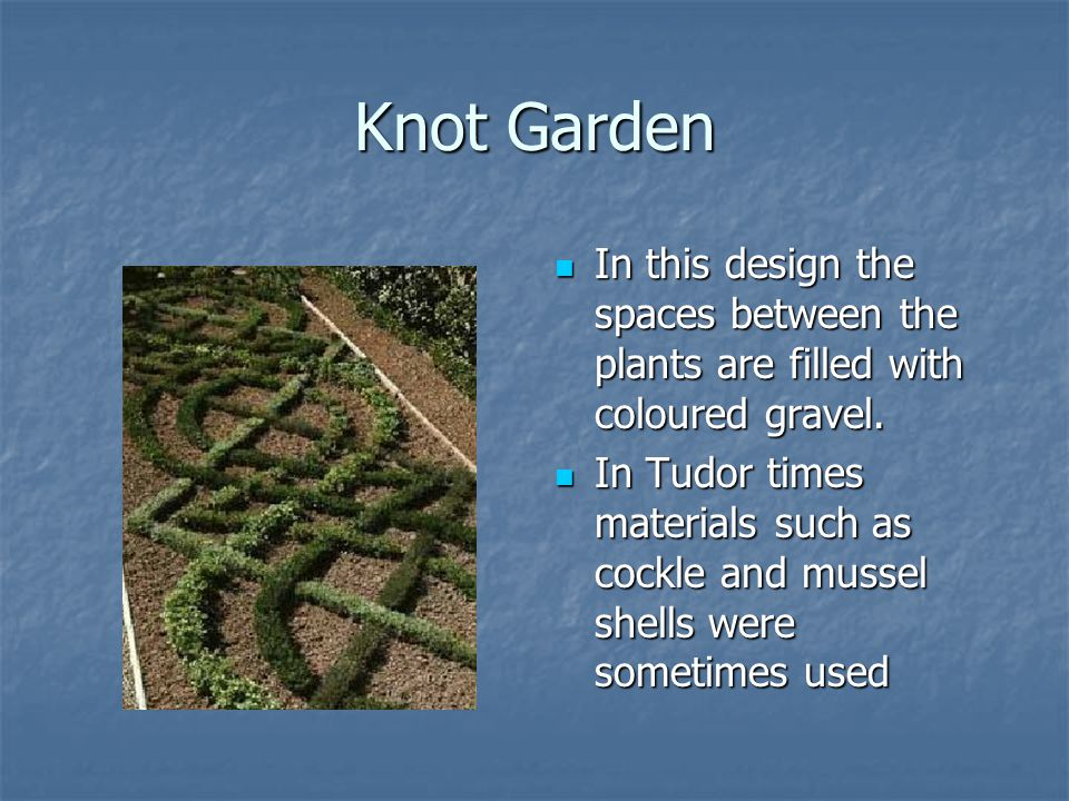 Knot Garden In this design the spaces between the plants are filled with coloured gravel.