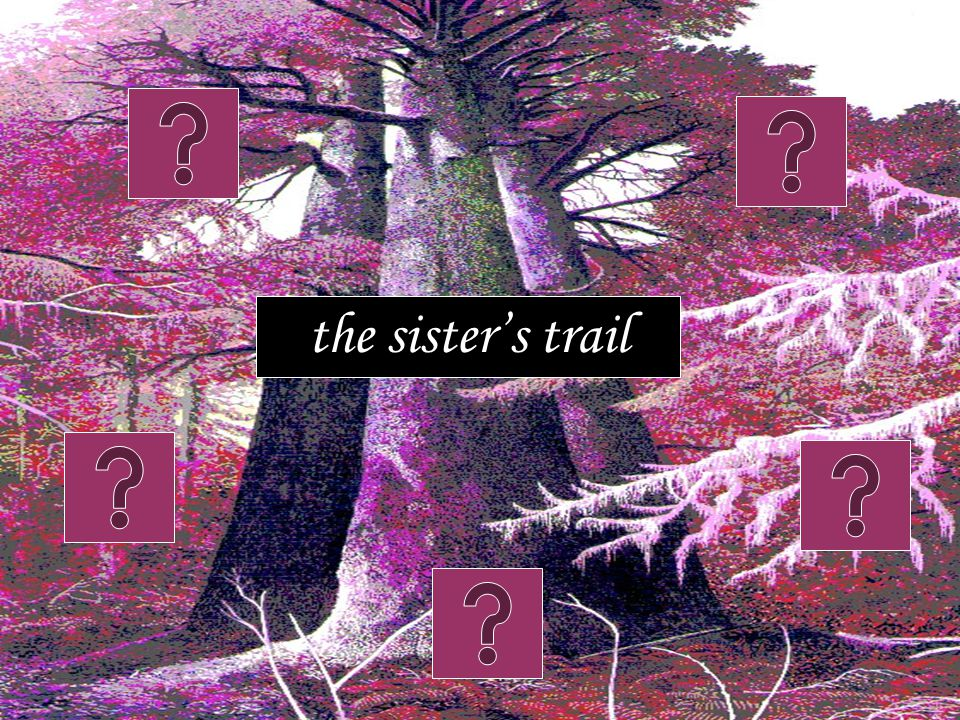 the sister's trail