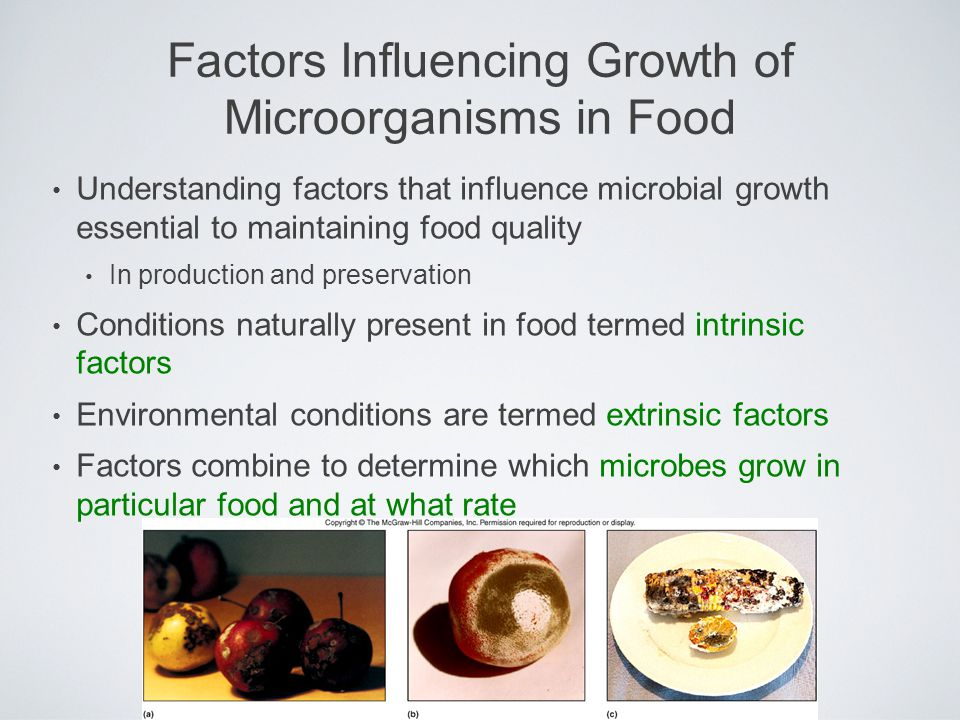 Factors Influencing Growth of Microorganisms in Food Understanding factors that influence microbial growth essential to maintaining food quality In pr