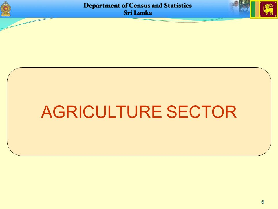 6 AGRICULTURE SECTOR