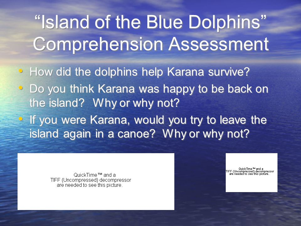 """""""Island of the Blue Dolphins"""" Comprehension Assessment How did the dolphins help Karana survive? Do you think Karana was happy to be back on the islan"""