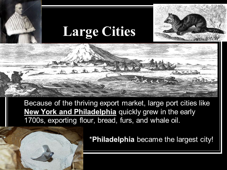 Large Cities Because of the thriving export market, large port cities like New York and Philadelphia quickly grew in the early 1700s, exporting flour, bread, furs, and whale oil.