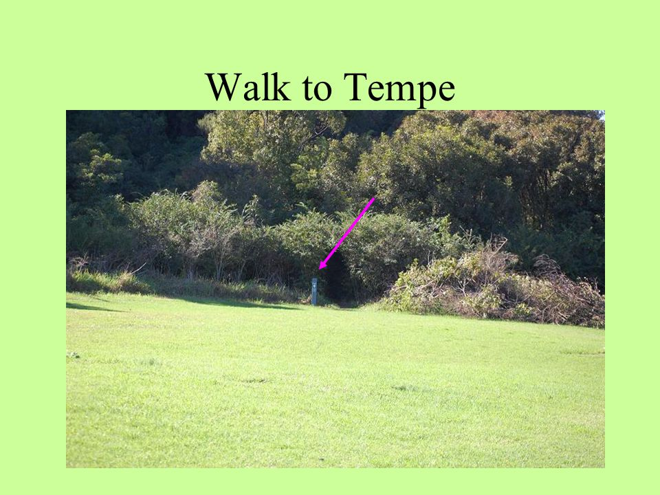 To start your walk to Tempe, look for the TVT marker and follow the Jackson Track out of Turrella Reserve Walk to Tempe