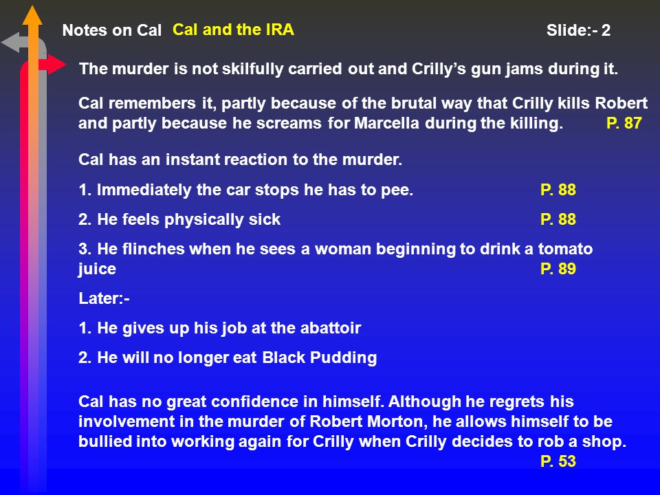 Notes on Cal Slide:- 2 Cal and the IRA The murder is not skilfully carried out and Crilly's gun jams during it.