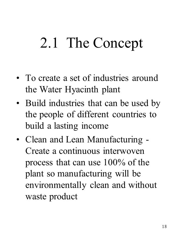 18 2.1 The Concept To create a set of industries around the Water Hyacinth plant Build industries that can be used by the people of different countries to build a lasting income Clean and Lean Manufacturing - Create a continuous interwoven process that can use 100% of the plant so manufacturing will be environmentally clean and without waste product