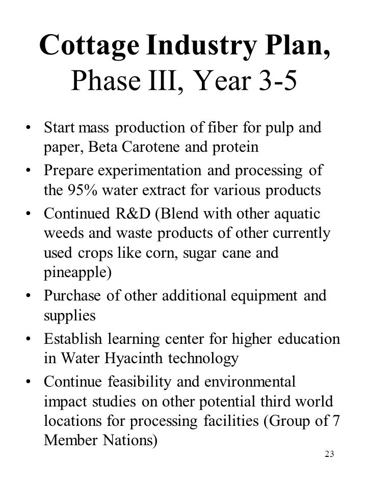 23 Cottage Industry Plan, Phase III, Year 3-5 Start mass production of fiber for pulp and paper, Beta Carotene and protein Prepare experimentation and processing of the 95% water extract for various products Continued R&D (Blend with other aquatic weeds and waste products of other currently used crops like corn, sugar cane and pineapple) Purchase of other additional equipment and supplies Establish learning center for higher education in Water Hyacinth technology Continue feasibility and environmental impact studies on other potential third world locations for processing facilities (Group of 7 Member Nations)