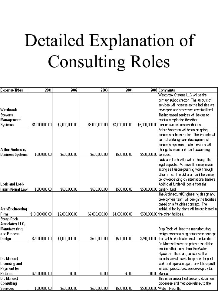 50 Detailed Explanation of Consulting Roles