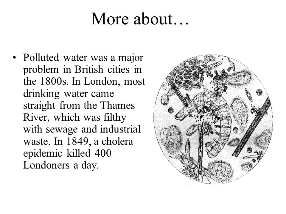 More about… Polluted water was a major problem in British cities in the 1800s.