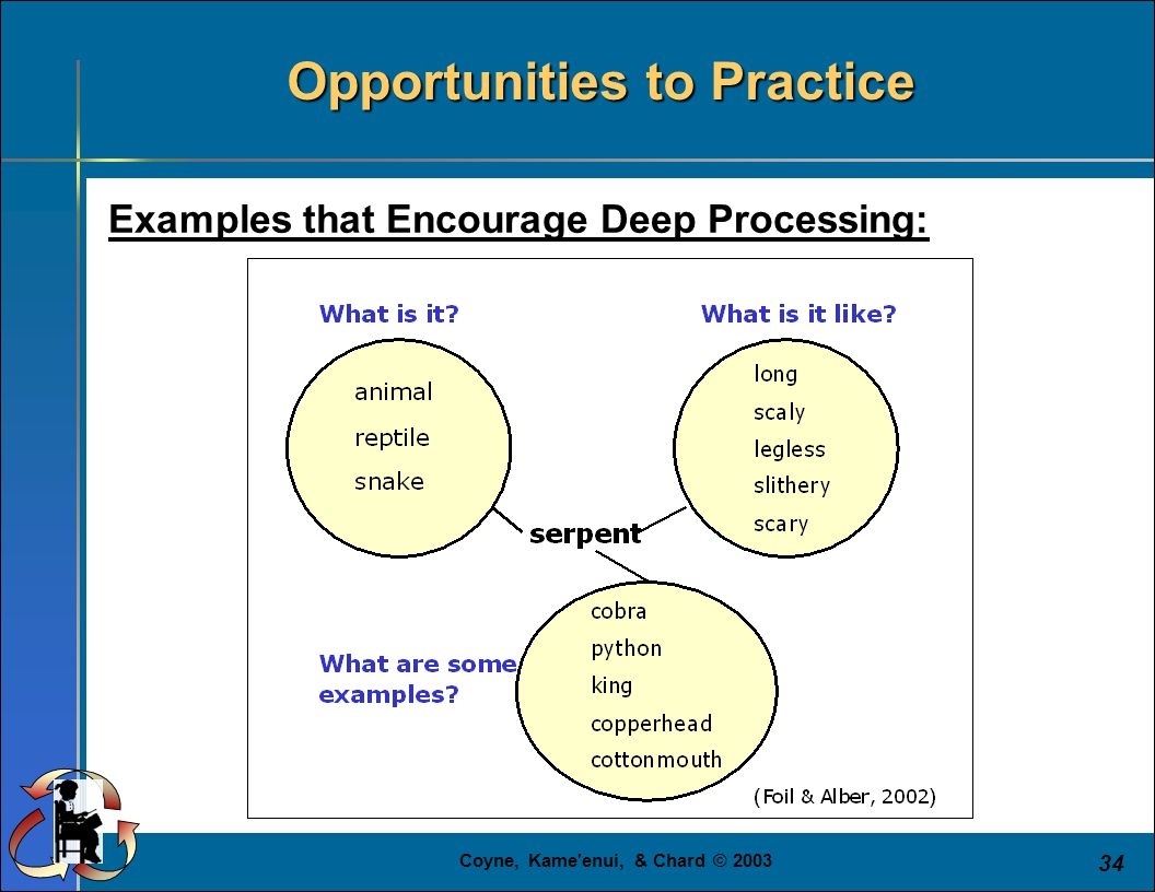 Coyne, Kame enui, & Chard © 2003 34 Examples that Encourage Deep Processing: Opportunities to Practice