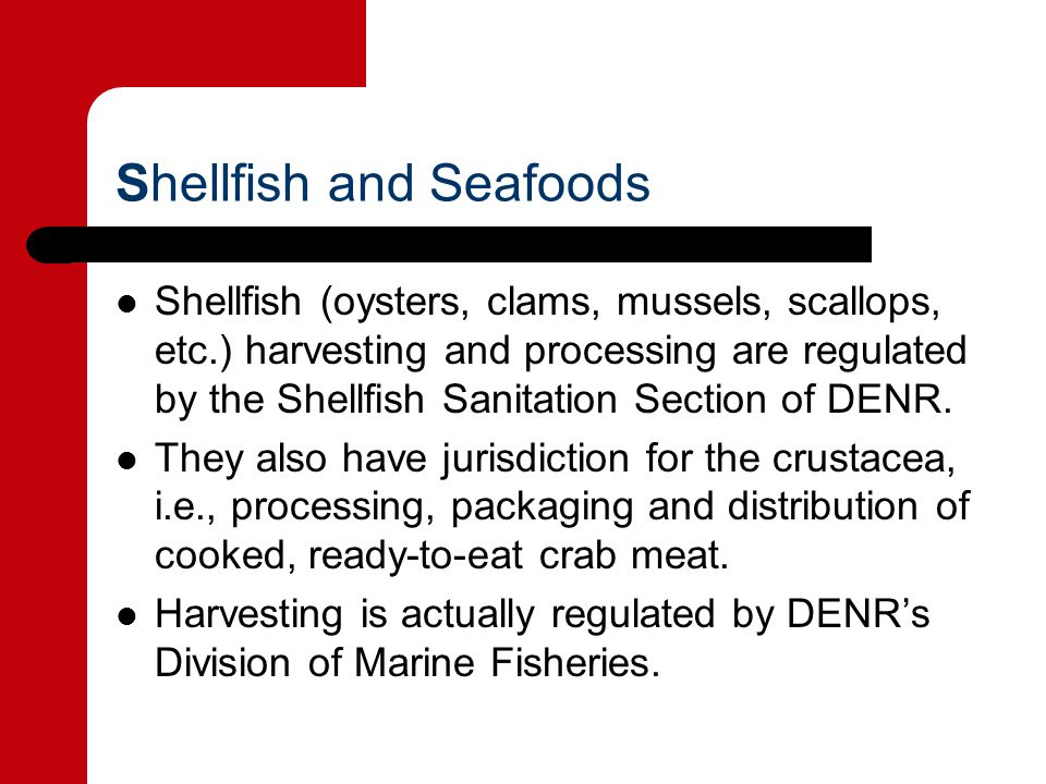 Shellfish and Seafoods Shellfish (oysters, clams, mussels, scallops, etc.) harvesting and processing are regulated by the Shellfish Sanitation Section of DENR.