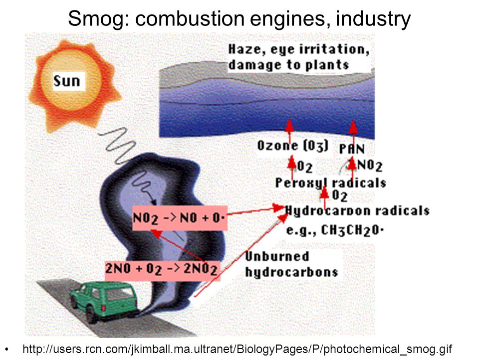 Smog: combustion engines, industry http://users.rcn.com/jkimball.ma.ultranet/BiologyPages/P/photochemical_smog.gif