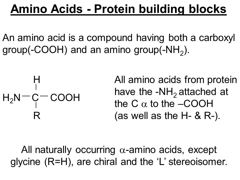 Amino Acids - Protein building blocks An amino acid is a compound having both a carboxyl group(-COOH) and an amino group(-NH 2 ). All amino acids from