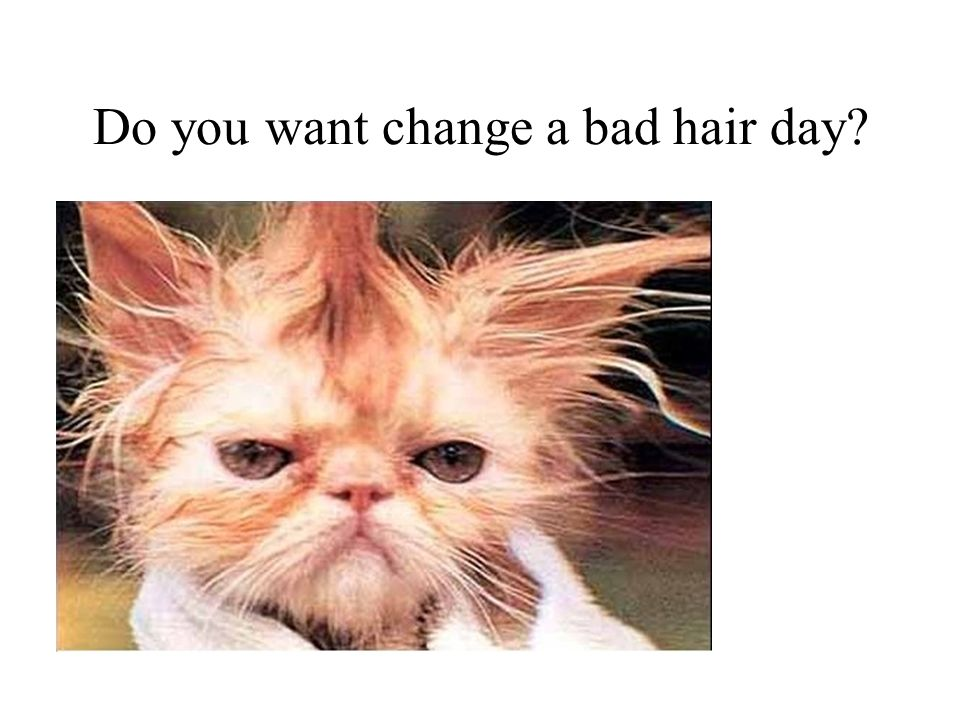 Do you want change a bad hair day