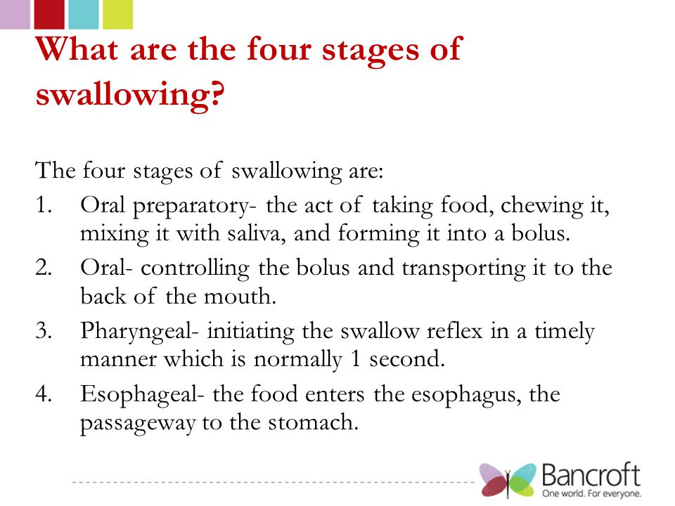 What are the four stages of swallowing? The four stages of swallowing are: 1.Oral preparatory- the act of taking food, chewing it, mixing it with sali