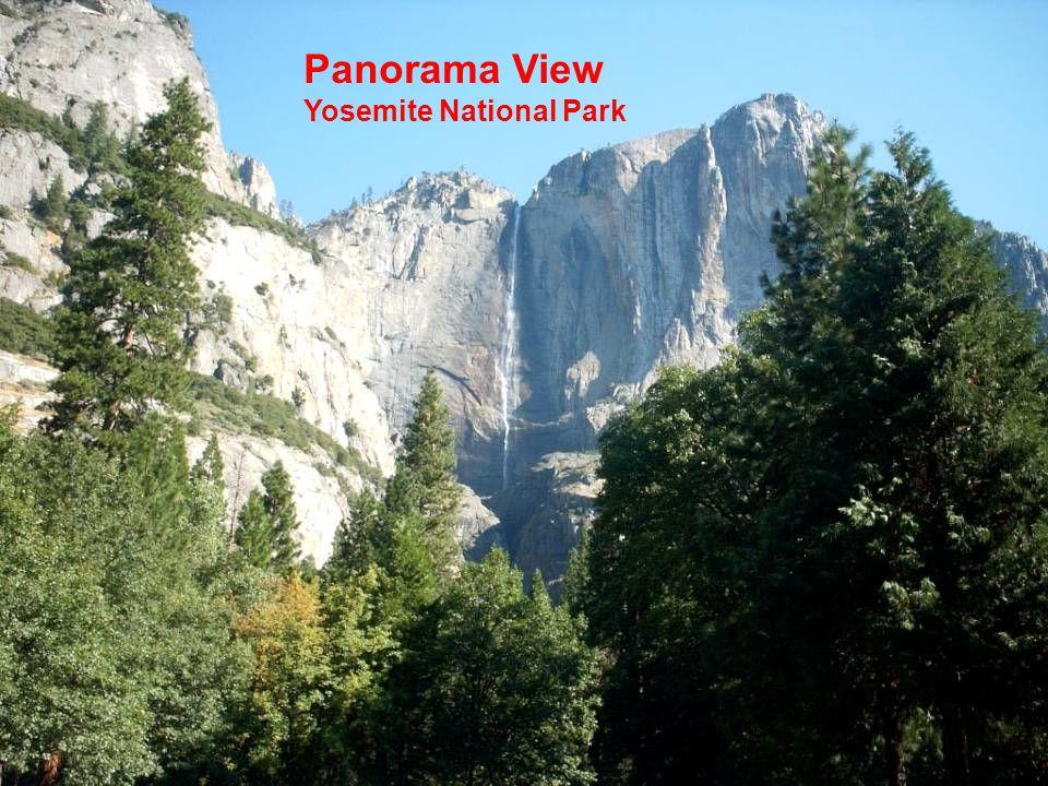Panorama View Yosemite National Park