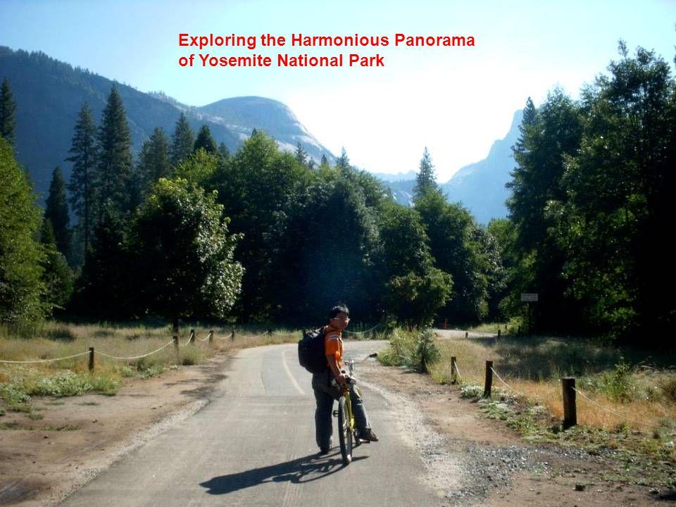 Exploring the Harmonious Panorama of Yosemite National Park
