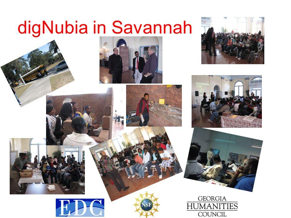 digNubia in Savannah