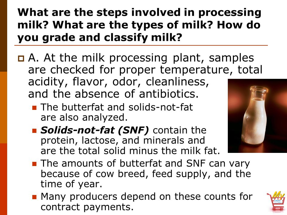 What are the steps involved in processing milk? What are the types of milk? How do you grade and classify milk?  A. At the milk processing plant, sam