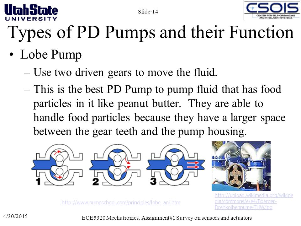 Types of PD Pumps and their Function Lobe Pump –Use two driven gears to move the fluid. –This is the best PD Pump to pump fluid that has food particle
