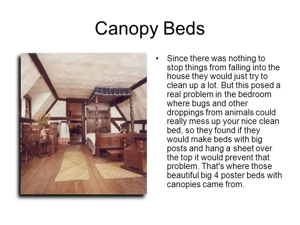 Canopy Beds Since there was nothing to stop things from falling into the house they would just try to clean up a lot. But this posed a real problem in