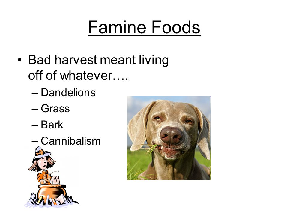 Famine Foods Bad harvest meant living off of whatever…. –Dandelions –Grass –Bark –Cannibalism