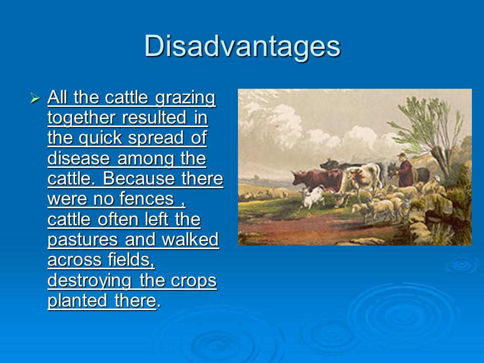  Peasants lived at a subsistence level.