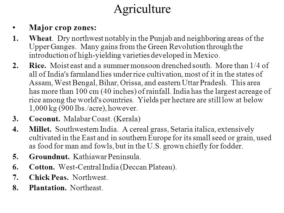 Agriculture Primary Sector: Indian agriculture is inefficient and labor intensive. Animals are frequently used for power. The village is the focus of