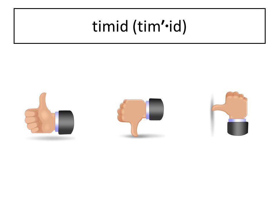 timid (tim′ · id)
