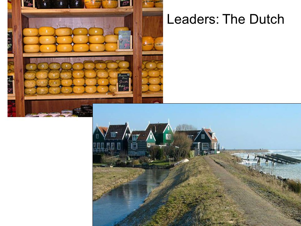 Leaders: The Dutch