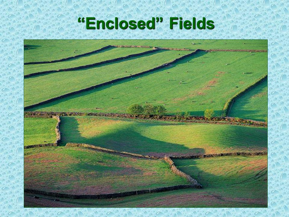 Enclosed Fields