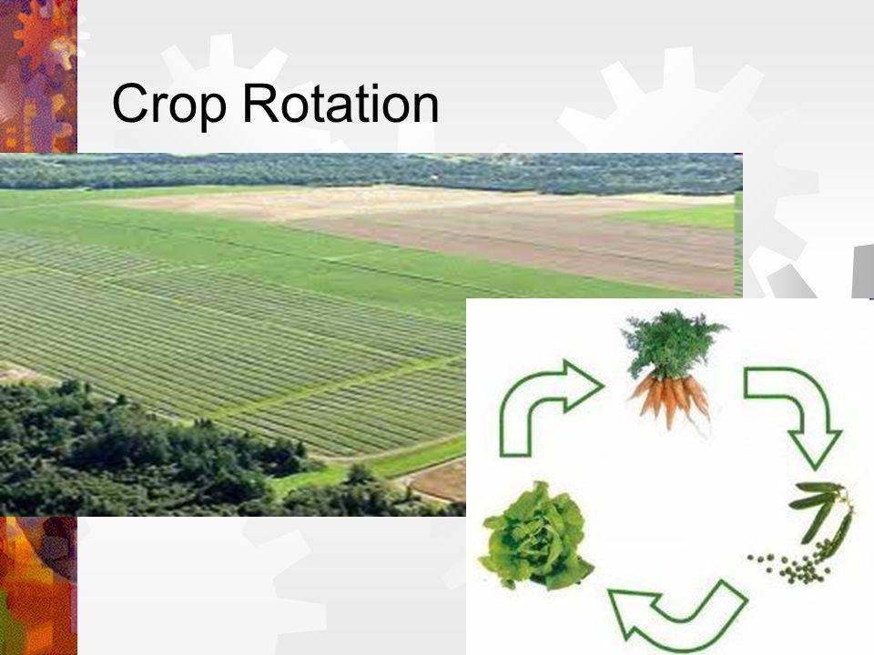 Agricultural Revolution inspires The Enclosure Movement The Enclosure Movement provides population Urbanization